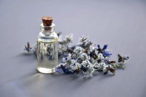 Las plantas medicinales contrarrestan los dolores musculares eficazmente